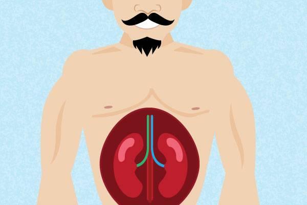 สุขภาพที่เกี่ยวกับ อวัยวะภายใน ที่คุณควรต้องรู้จักวิธีการป้องกัน
