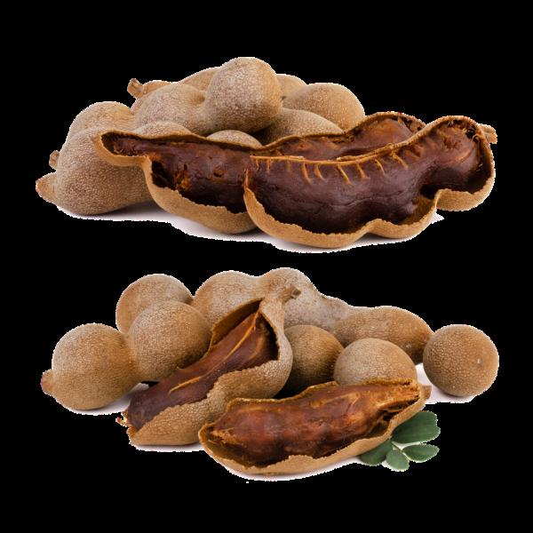 มะขาม ผลไม้ที่ใช้ทำยาและประโยชน์มากมาย