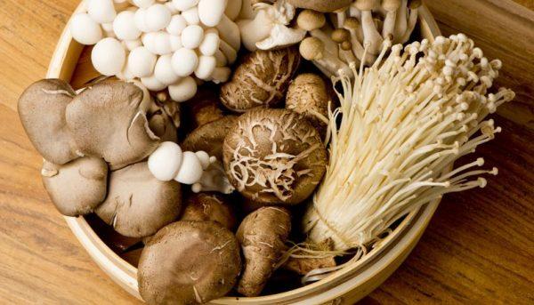 ประโยชน์ของเห็ด ดีต่อสุขภาพรสชาติอร่อย ที่คนรักสุขภาพควรทาน